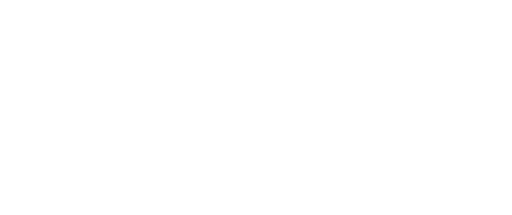 maxls ibm business premier partner